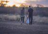 Nybagte forældre går med deres barn